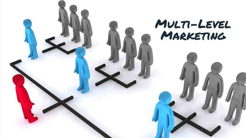 Сетевая организация - это... Определение и основные признаки