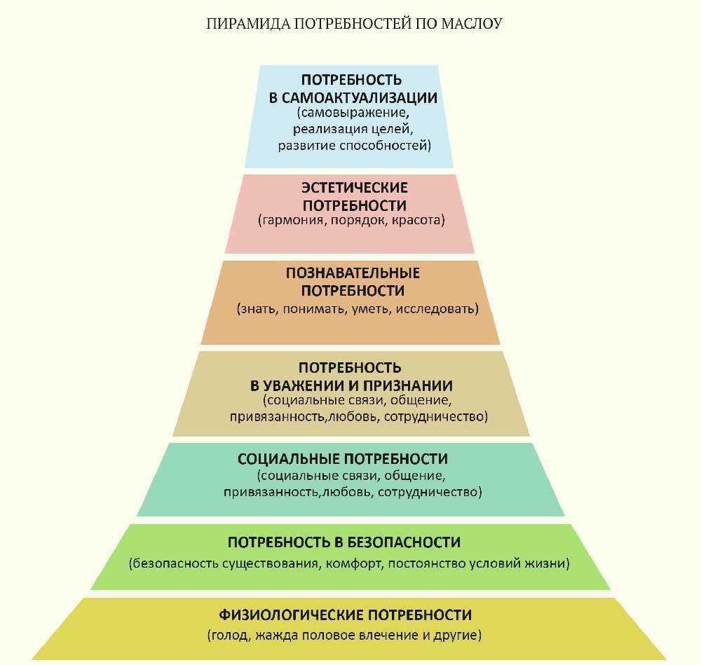 Основные элементы маркетинга: понятие, характеристики и услуги