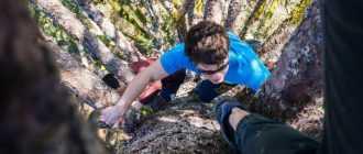 Как залезть на дерево: инструкция