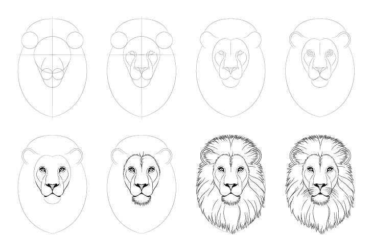 Как нарисовать голову льва карандашом