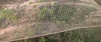 Что такое тенета для ловли зверей и птиц