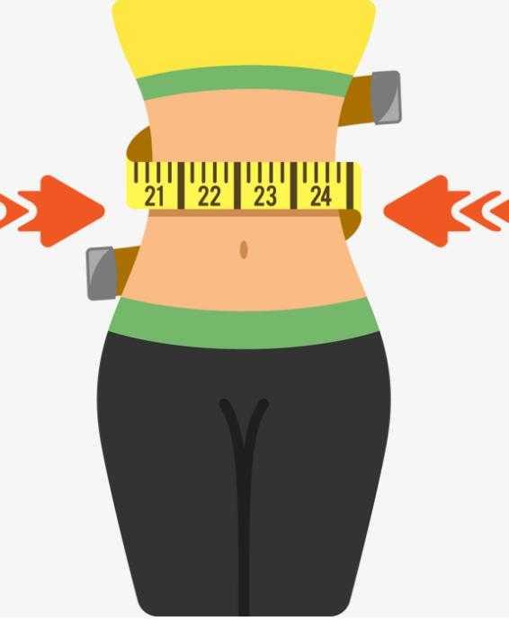 Женская талия: виды, особенности телосложения и идеальные пропорции