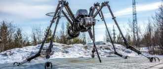 Памятник комару в Ноябрьске: фото, описание и история создания